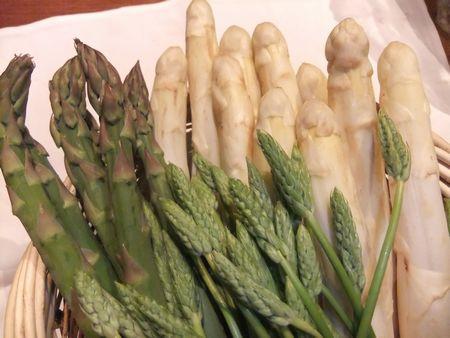 ホワイトアスパラガスの特徴は、重さが100グラムほどと大きく、しかし柔らかくシャキッとした食感でみずみずしく、噛むとほのかな甘味と苦味が口に広がっていきます。  ヨーロッパでは4月中旬から6月まで、市場にホワイトアスパラガスが山積みで並んでいて、食卓を華やかにしています。  栄養価も高く、穂先に含まれるルチンは血管を丈夫にし、血圧を下げる効果があると言われています。そしてアスパラギン酸はスタミナ増強の効果があると言われています。 茹でても、こういった栄養価がほとんどお湯に流れ出ないそうです。  神楽坂「アルベラータ」では、ホワイトアスパラガスはもちろん、前回ご紹介したアスパラソバージュ、そしてグリーンアスパラガスなどを盛り込んだ、「春のアスパラ尽くしコース」をご用意させて頂きます。  暖かくなり、皆様でお集まりになる機会が増えてくるこの季節。春を感じる食材をふんだんにご用意して、皆様の御来店を、心よりお待ちしております。